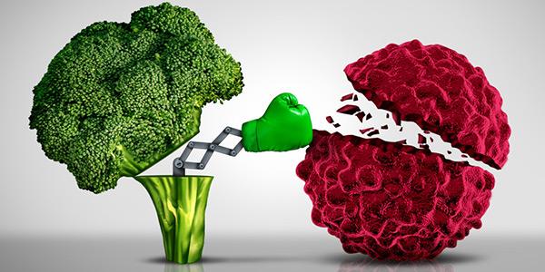 kanser destek tedavisi beslenme